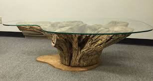 best coffee table glass with tree base stump for style and trend