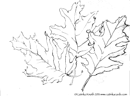 100 coloring pages of fall leaves free printable coloring pages