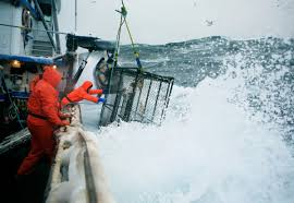 corey arnold u0027s photos of crab fishing on the bering sea business