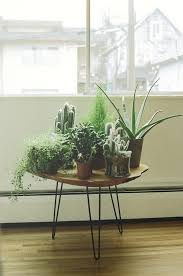 window table for plants collection of plants by the window perhaps a smaller white circular