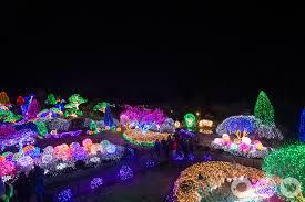 garden of lights hours it s christmas at lighting festival seoul garden of the morning calm