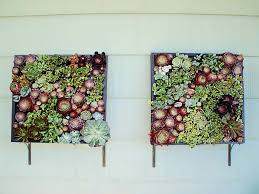 plant wall hangers indoor thinking outside the planter box ideas realized