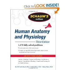 Human Anatomy And Physiology Study Guide Pdf Schaum U0027s Outline Of Human Anatomy And Physiology 3rd Edition Pdf