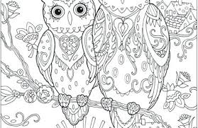 coloring page for adults owl free printable adult coloring pages owl just colouring pages for