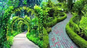 Modern Garden Path Ideas 20 Modern Wood Garden Path Ideas Diy Garden Path