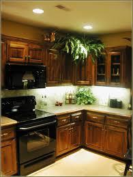 Kichler Landscape Lighting Parts Kichler Cabinet Lighting Parts Hum Home Review