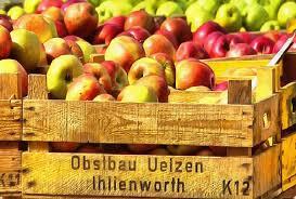 ukrainian thanksgiving box crop apples holiday fruit wealth summer