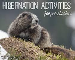 hibernation activities for preschoolers teaching mama