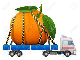 fruit delivery road transportation of fresh orange fruit delivery of big orange