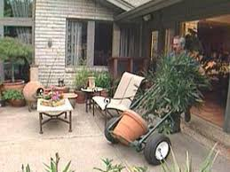 How To Arrange Indoor Plants by Moving Houseplants Outside Hgtv