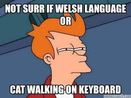 Language Meme - language