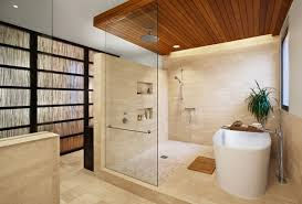 bathroom tub and shower designs distinctive bathtub and bathe combo designs for trendy houses