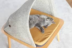 meyou designs stylish cat beds u2014 urdesignmag