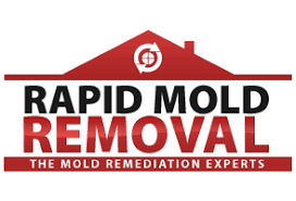rapid mold removal mold detection mold removal and mold