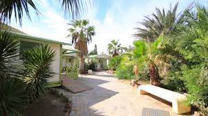 Cateracterum Palm by Campsite Los Escullos Cat 1 Youtube