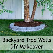 Backyard Well Backyard Makeover Diy Tree Wells Salt Lick Lessons