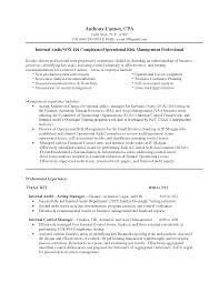 Sample Actuary Resume by Chief Internal Auditor Cover Letter