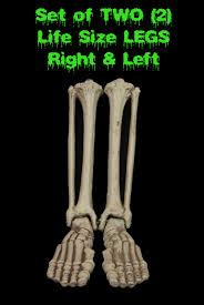 Life Size Posable Skeleton Halloween Life Size Instant Rip Coffin Prop Gothic Graveyard Cemetery