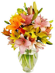 asiatic lilies benchmark bouquets 12 stem assorted asiatic lilies