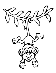 hanging monkey preschool coloring pages zoo animals animal
