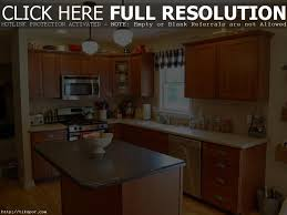 What Color Should I Paint My Kitchen by What Color Should I Paint My Kitchen With Dark Cabinets Home
