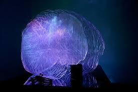 Light Project Brainlight Jade Artist