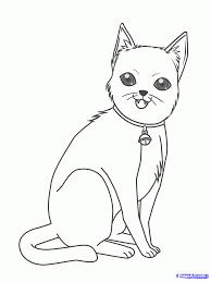 draw kitty anime kitty step step pets animals