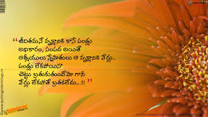 thanksgiving quotation heart touching friends quotes like success