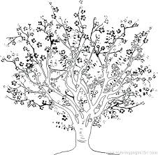 coloring pages for adults tree tree coloring pages tree coloring page colouring of pages tree