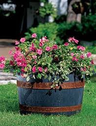 amazing styles of planters wooden deck planters whiskey barrel