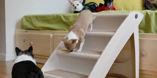 5 best pet ramps and stairs reviews of 2018 bestadvisor com