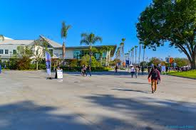 best sociology degree colleges in the u s 2017