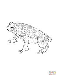 toads coloring pages free coloring pages