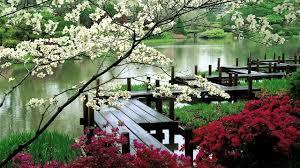 zen garden bibliafull com