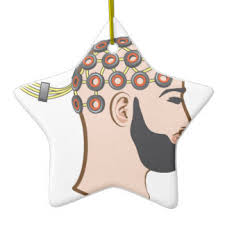 neuroscience ornaments keepsake ornaments zazzle