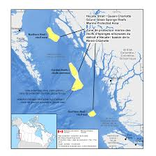 What Is A Map Projection Dfo Hecate Strait Mpa
