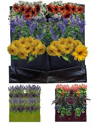 amazon com 4 pocket vertical garden planter living wall