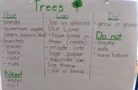 paula u0027s preschool and kindergarten trains turtles and trees for t