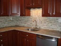 stone veneer backsplash alder cabinets fisher and paykel two