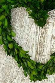 artificial boxwood wreath exterior design fascinating boxwood wreath for door decorating