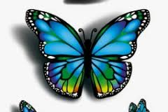 butterfly designs 3d blue 3d butterfly design 3d butterfly