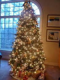lindaraxa coco u0027s first christmas tree