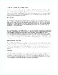 Examples Of An Autobiography Essay Example Of Student Autobiography Essay Writing Research Paper
