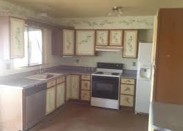 Kitchen Cabinets Phoenix Az by Painted Kitchen Cabinets U2013 Ugly House Photos
