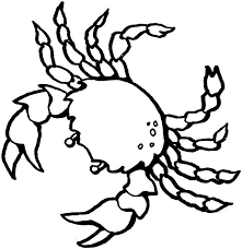 Crab Coloring Page For Kids Free Printable Picture Crab Coloring Page