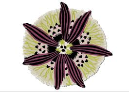 missoni home botanica rug missoni home rugs
