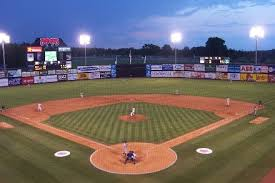 Mudcat Atv Tires Customer Recommendation Minor League Ballpark Visits