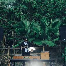 6 Great Tips For Booking Wedding Transportation by 50 Questions To Ask Wedding Djs And Bands Brides