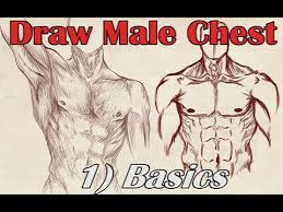 how to draw a male chest front view basics youtube