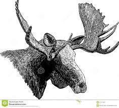 woodcut moose head royalty free stock images image 21271039